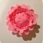 How To Make A Gum Paste Peony: Part 2